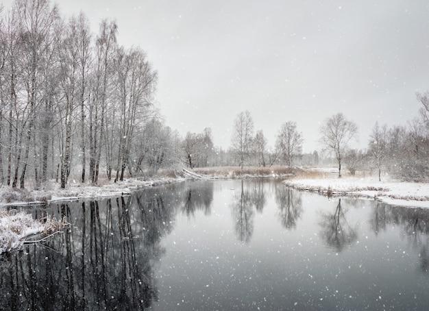 ウィンターパークの吹雪。積雪下の池のそばの背の高い木々。ミニマルな冬の風景。