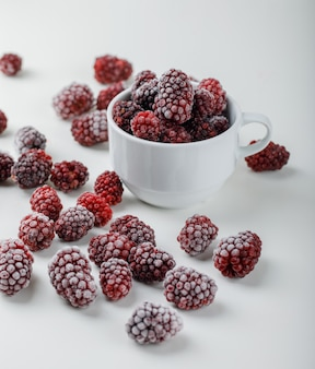 Snowy blackberries in a white cup