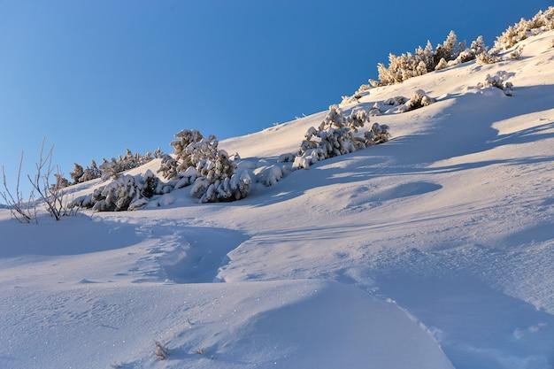 산에서 눈 덮인 시골 길