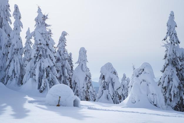 冬の森の雪に覆われたエスキモーのイグルー。観光客のための避難所のある風景。雪の吹きだまりと木々のある美しい景色