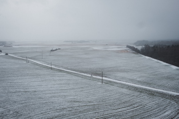 Snowy field in the winter