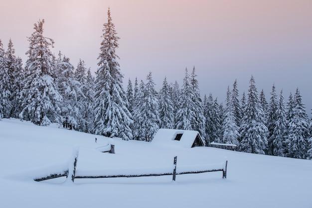 カルパティア山脈の雪に覆われた森。雪に覆われた小さな居心地の良い木造住宅。山での平和と冬のレクリエーションのコンセプト。明けましておめでとうございます