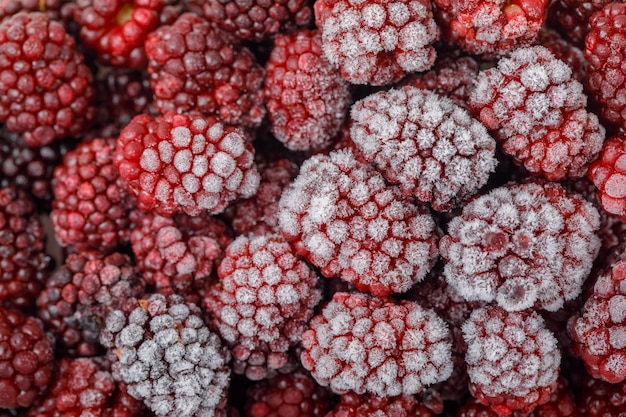 Snowy fresh blackberries . close-up. horizontal.