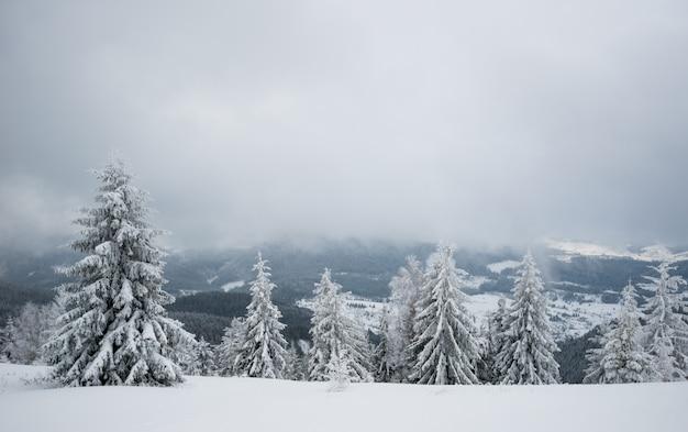 Снежная горка с елями и снегом
