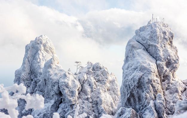 Snowy landscape. winter landscape on a mountain top. trees in the snow. mountain peak, blue sky, nature, winter sun. mountain ai-petri. crimea