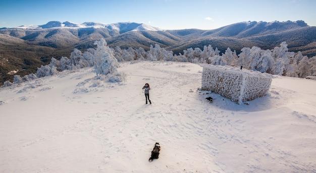 スペイン、シエラデグアダラマ国立公園の凍った森と雪景色