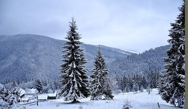 房と山々のある雪景色