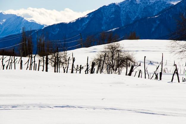 ジョージア州グダウリの雪山の風景。晴れた日。