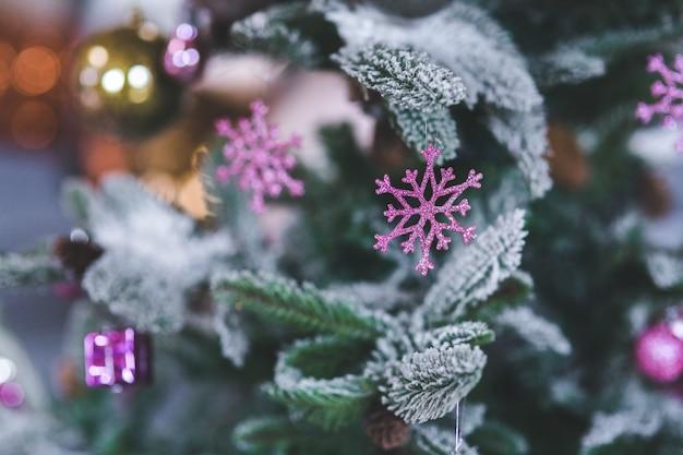紫色の花と雪に覆われた松