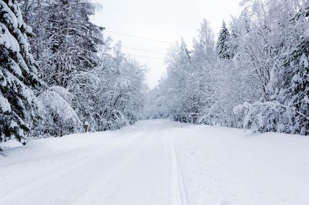 Snowy road in winter forest, beautiful frosty landscape, russia