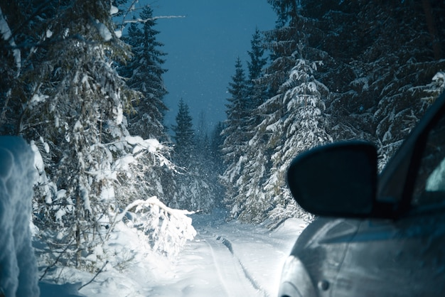 Snowy road in the winter forest. night time