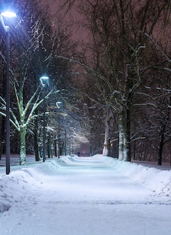 Snowy streets in the park in the evening