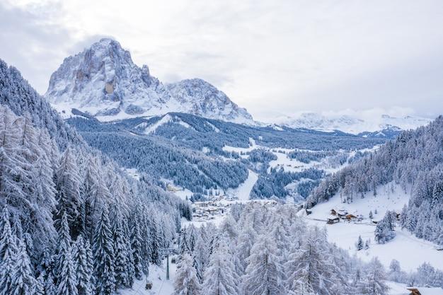 昼間に撮影された雪に覆われた木々に覆われた山々