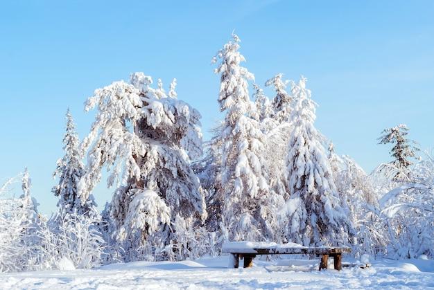 Снежный зимний пейзажный лес на вершине холма в солнечный морозный день и заснеженный деревянный стол