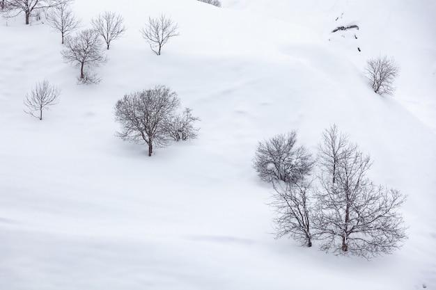 ジョージア州の雪に覆われた冬の山々