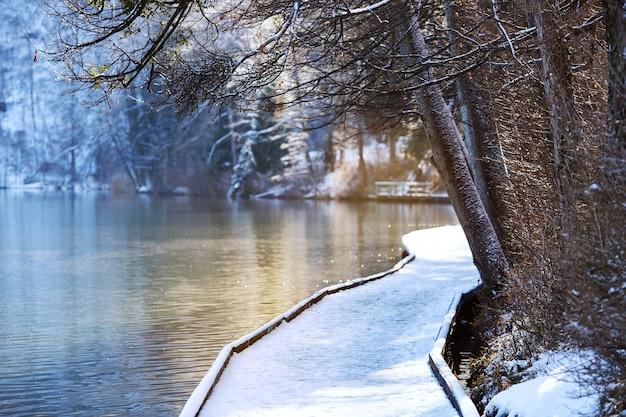 ぼやけた背景のアルパイン湖ブレッドの雪に覆われた木製の桟橋冬の風景