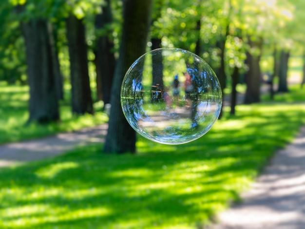 自然公園のシャボン玉