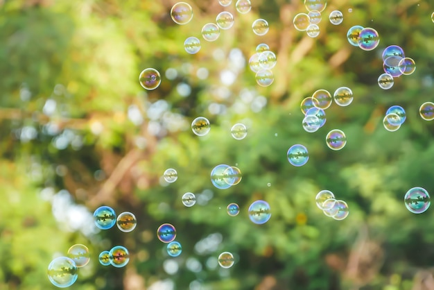 Soap bubbles on blurred green nature