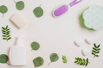 Soap; hairbrush; dispenser bottle and green leaves on white backdrop