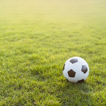 Soccer ball on bright grass