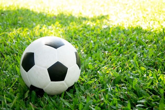 Soccer ball on green grass.