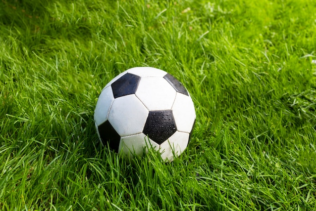 Soccer ball on the ground.