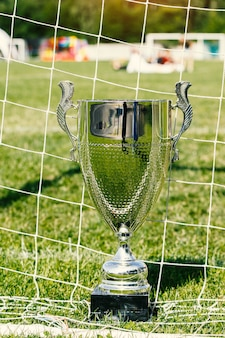 Soccer cup, trophy on the field and grid.