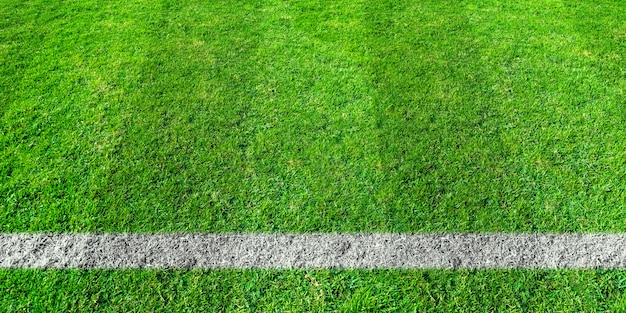 Soccer line in green grass of soccer field. green lawn field pattern for background.