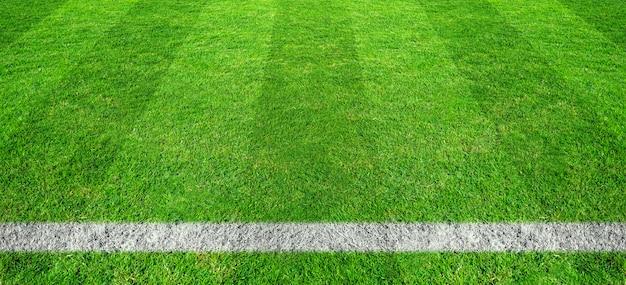 サッカー場の緑の芝生でサッカーライン。スポーツの背景のための緑の芝生フィールドパターン。