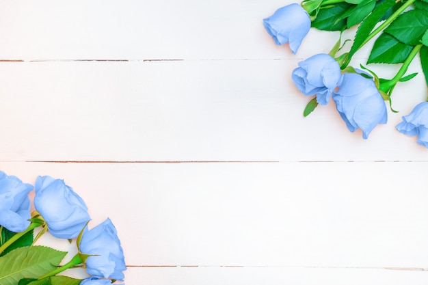 Soft blue roses on white wooden background
