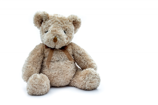 Soft feather teddy bear