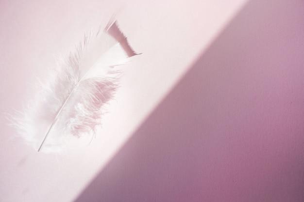 パステルピンクの背景に柔らかく、ふわふわの白い羽。