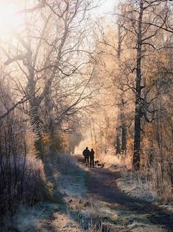 ソフトフォーカス。日当たりの良い霧の小道、霜に覆われた木々、犬の群れを歩く男のシルエットのある雰囲気のある冬の風景。垂直方向のビュー。
