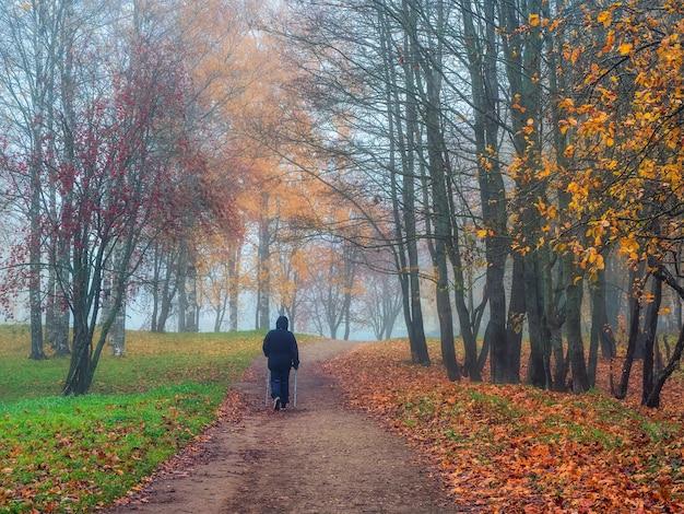 ソフトフォーカス。色とりどりの落ち葉がハイキングコースを覆っている公園の霧深い秋の風景。身に着けている老人がゆっくりと葉の上を歩いています。背景に黄色の木。