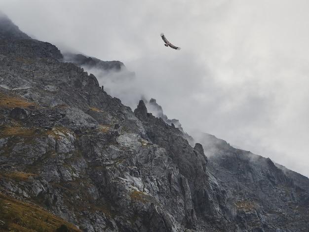 ソフトフォーカス。ホラー山の影。巨大なロッキー山脈の間の劇的な霧。大きな崖への幽霊のような雰囲気の眺め。低い雲と美しい岩。ミニマリストの風景不思議な場所。