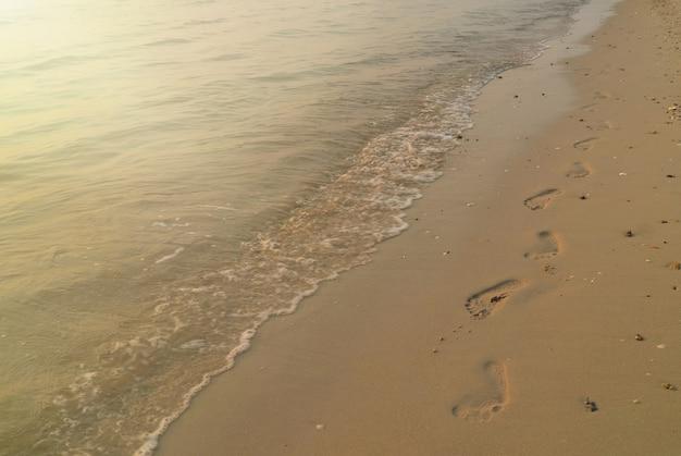 파도의 부드러운 초점은 모래 발자국과 여름 아침에 물에 반사된 햇빛으로 해변에서 친다