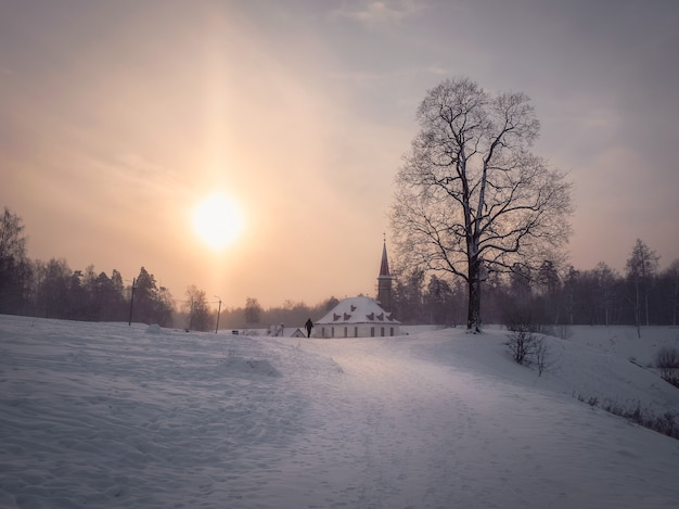 Мягкий фокус. солнечное утро зимний морозный пейзаж со старым мальтийским дворцом в красивом природном ландшафте. гатчина. россия.