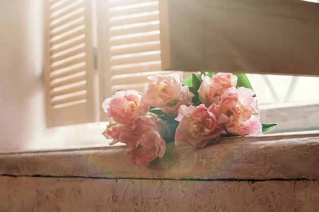 Soft focused pale pink flowers on window sill