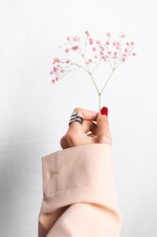 大きなリングの赤いマニキュアと女性の手の柔らかく優しい写真は、白にかわいい小さなピンクのドライフラワーを保持します。