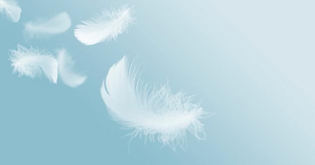 Мягкие слегка пушистые белые перья, парящие в небе