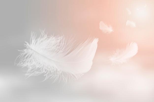 Мягкая легкость белых перьев, парящих в небе абстрактное перо, летающих в небесах
