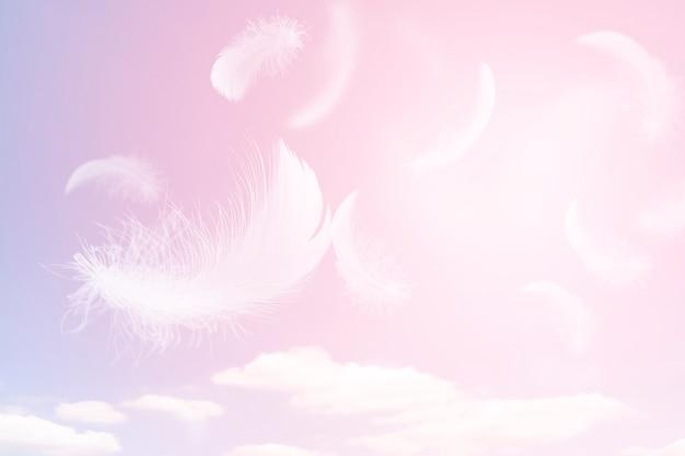 Мягкая легкость белых перьев, парящих в небе с облаками перо, летящих в небесах