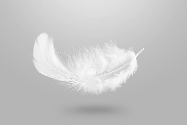 Мягкое легкое белое пушистое перо, падающее в воздух