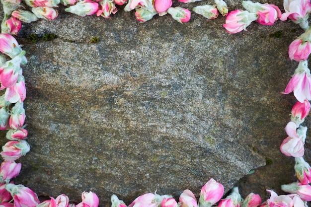 石の上に横になっている柔らかいピンクの春の花。もみ春の花。