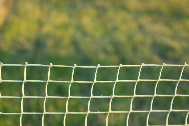 부드러운 플라스틱 메쉬는 일몰 동안 녹색 잔디를 보호합니다. 소프트 포커스