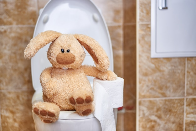 Soft stuffed rabbit with toilet paper in the toilet.