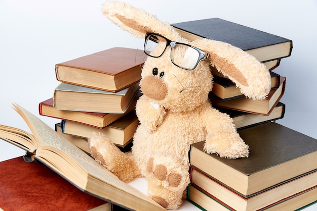 Soft toy rabbit in glasses with books.