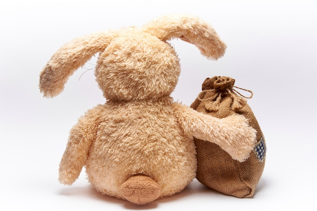 Soft toy rabbit with bag on a white background.
