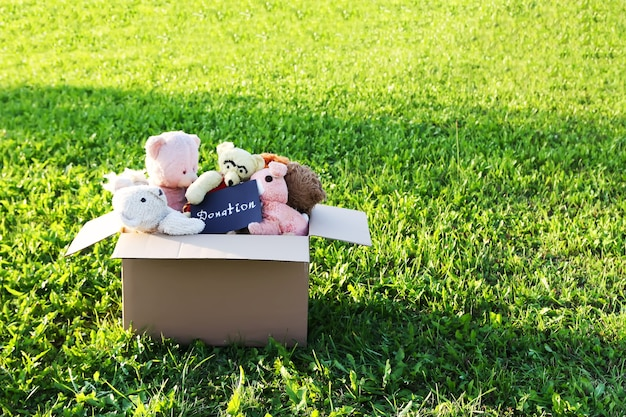 Мягкие игрушки для пожертвования в открытой картонной коробке на зеленой траве на открытом воздухе при солнечном свете