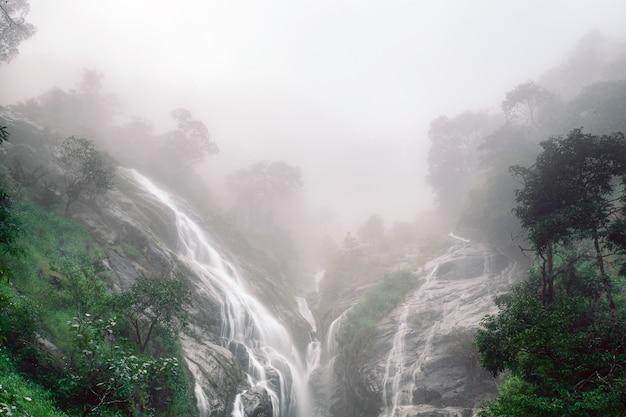 Мягкая вода ручья в природном парке, красивый водопад в тропическом лесу